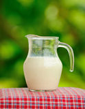 Pitcher of milk  in the garden. Royalty Free Stock Photos