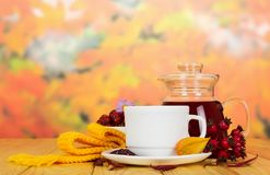 Pitcher tea from rosehip, cup and saucer, physalis, on wooden table Royalty Free Stock Photos