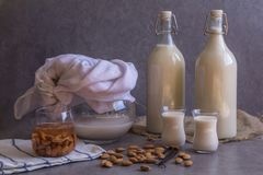 Pitcher, two bottles and two small glasses filled with homemade Almond milk on rustic grey background, raw almond nuts, vanilla be. Ans. Copy space Healthy royalty free stock photos