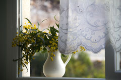 Pitcher with yellow flowers on the window Royalty Free Stock Images