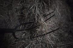 pitchfork Fotografia Stock