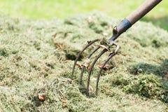 Pitchfork farmer in hay. Pitchfork farmer in the hay in the spring stock image