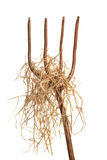 Pitchfork With Hay Royalty Free Stock Image