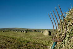 A pitchfork stuck in a bale of hay Royalty Free Stock Photos