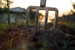 Pitchfork-stucks im Lehm während des Sonnenuntergangs, Gartenarbeitwerkzeuge (fla lizenzfreie stockfotos