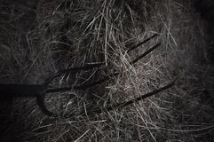 Pitchfork. A three pronged pitchfork laid down on loosened bales of hay at horse stables Stock Photo