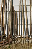 Pitchforks for Sale. Old pitchforks and their shadows are line up for sale  along a wall at a flea market Stock Photography
