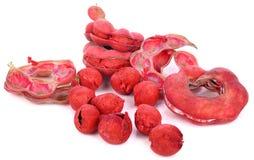 Pithecellobium Dulce-Frucht lokalisiert auf weißem Hintergrund lizenzfreie stockbilder