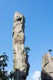 Pithon gigantesco que sube en la montaña Imagen de archivo