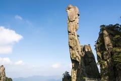 Pithon gigantesco que sube en la montaña Fotos de archivo