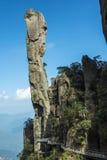Pithon gigantesque se levant dans la montagne Photos libres de droits