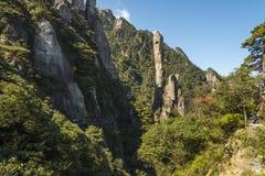 Pithon gigantesque se levant dans la montagne Image stock