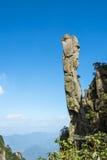 Pithon gigantesque se levant dans la montagne Image libre de droits