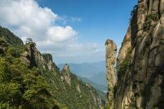 Pithon gigantesque se levant dans la montagne Photographie stock