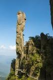 Pithon gigantesque se levant dans la montagne Images libres de droits