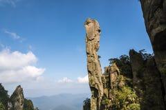 Pithon gigantesque se levant dans la montagne Images stock