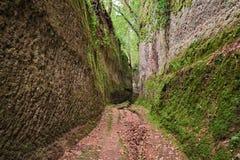 Pitigliano, Grosseto, Tuscany, Włochy: Etrusk Przez Cava, antycznego okopu kopiącego w tuff skałę, fotografia stock