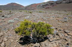 Piton de la Fournaise volcano on La Reunion island Stock Image