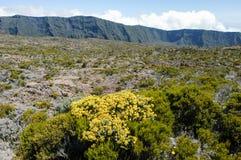 Piton de la Fournaise volcano on La Reunion island Royalty Free Stock Image
