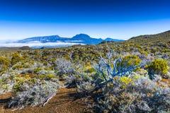 Piton des Neiges, Reunion Island. Piton des Neiges at Reunion Island Stock Image