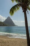 Piton and palm tree in Saint Lucia. Beach view across the bay at Soufriere to the sea and Piton mountain. Framed with a palm tree Stock Photos