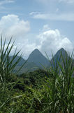 Pitons. View of the Pitons in St Lucia Stock Photo