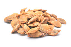 Pits. Apricot pits isolated on white Royalty Free Stock Image
