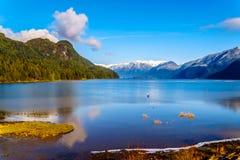 Pitt Lake con los picos capsulados nieve de los oídos de oro, el pico del escozor y otros picos de montaña de las montañas circun Foto de archivo