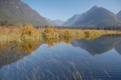 Pitt Lake marsh. Kayak trip on Pitt Lake - Widgeon Creek in July 2012 Royalty Free Stock Photos