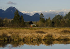 Pitt Meadows dykes Royalty Free Stock Images