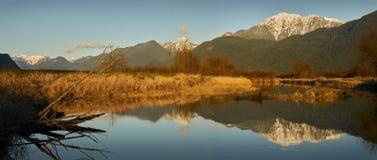 Pitt Polder-ökologischer Vorbehalt lizenzfreie stockfotografie