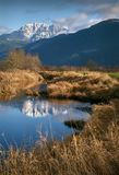 Pitt polder, Pitt łąki, BC obrazy stock