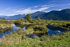 Pitt Polder, Pitt Lake, Pitt Meadows, BC stock image