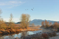 Pitt River and Golden Ears Mountain at sunrise Royalty Free Stock Image