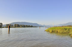 Pitt River in the summer Stock Photography