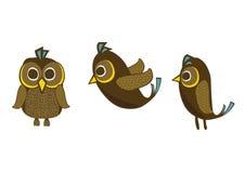 Pitta-Rollbahre-Vogelcharakter Stockfoto