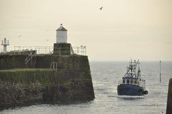 Pittenweem Schotland Stock Foto