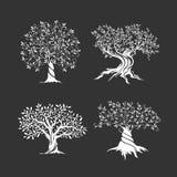 Pittogramma di concetto di progetto di logo Immagini Stock Libere da Diritti