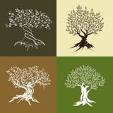 Pittogramma di concetto di progetto di logo dell'illustrazione Immagini Stock