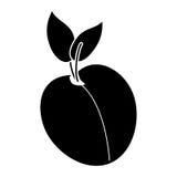 Pittogramma di nutrizione della frutta dell'albicocca Fotografia Stock Libera da Diritti