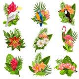 Pittogrammi tropicali dei fiori e degli uccelli messi illustrazione di stock