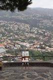 Pittore sul Madera fotografia stock