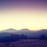 Pittoresk dimmig och kall soluppgång i landskap Första rimfrost i dimmig morgonäng Arkivfoto