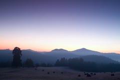 Pittoresk dimmig och kall soluppgång i landskap Första rimfrost i dimmig morgonäng Arkivfoton