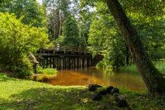 Pittoresk flod Rospuda, Polen Royaltyfri Fotografi