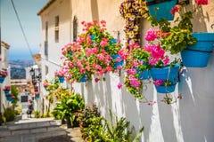 Pittoresk gata av Mijas med blomkrukor i fasader Andalus Royaltyfria Bilder