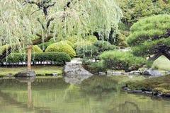 Pittoresk japanträdgård med damm Fotografering för Bildbyråer