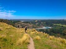 Pittoresk Rakaia klyfta och Rakaia flod på den södra ön av Nya Zeeland royaltyfria foton