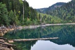 pittoresk ritsa för abkhazia lakeliggande Arkivfoton