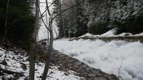 Pittoresk sikt av den snabba flödande floden med aktuellt skapande skum för hastighet, i att förbluffa vinterskogen med träd pano arkivfilmer